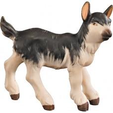 Goat kid 12 cm Serie Colored maple