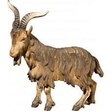He-goat 50 cm Serie Antique