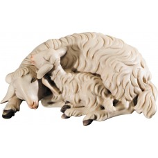 Double sheep lying 12 cm Serie Colored maple