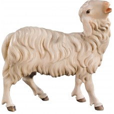 Sheep bleating 12 cm Serie Colored maple