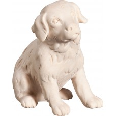 Saint Bernard puppy 40 cm Serie Natural maple
