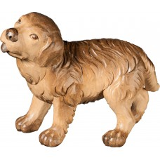 Saint Bernard puppy 50 cm Serie Stained+tones linden