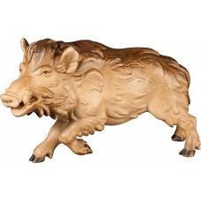 Wild boar male 27 cm Serie [15x9cm] Stained+tones maple